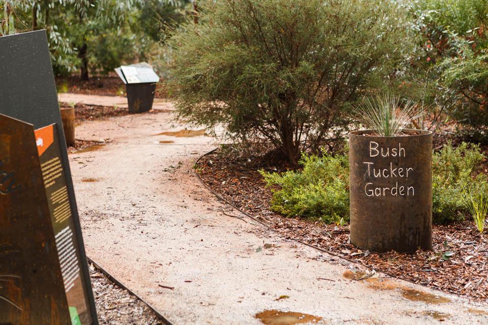 Bullawah Trail-7720
